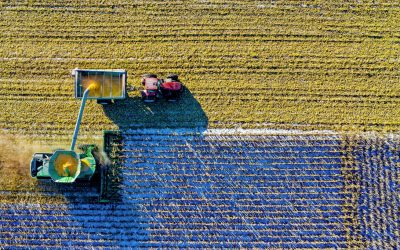 COVID-19 Pandemic Has Led to a Food Crisis says Italian Prime Minister Mario Draghi